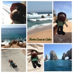 Dr. Melita Pope Mitchell and Norm went to Cabo San Lucas!